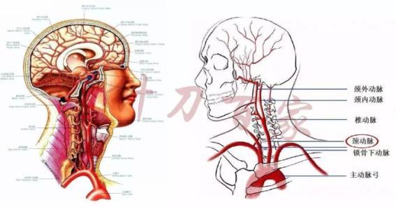 颈椎病症状,颈椎病治疗,颈椎病原因,颈椎病注意事项,颈椎病预防