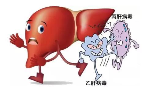 乙肝的饮食注意事项,乙肝的饮食禁忌