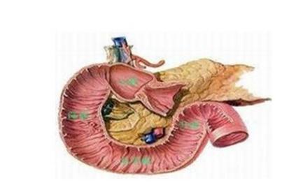输尿管结石的患者在术后需要注意哪些事?