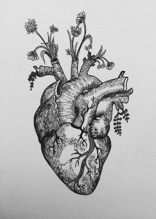 心绞痛如何鉴别诊断,鉴别诊断心绞痛的方法