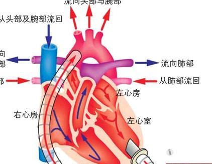 心绞痛的治疗方法有哪些,心绞痛的最佳治疗方法有哪些