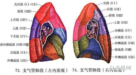 尘肺如何预防,怎么预防尘肺病