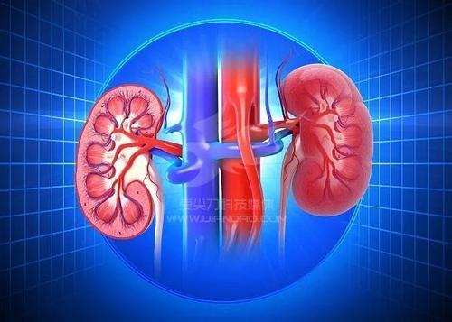 肾功能检查项目检查方法,肾功能检查中最常用的检查项目是什么