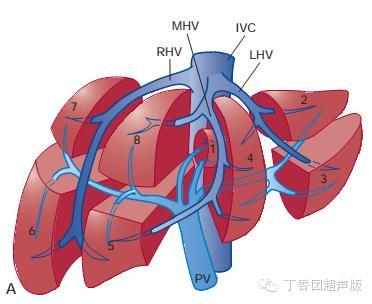 乙肝两对半检查结果分析,乙肝两对半检查报告指标