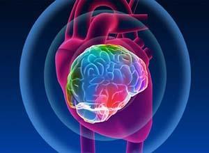 该怎样检查脑梗死疾病