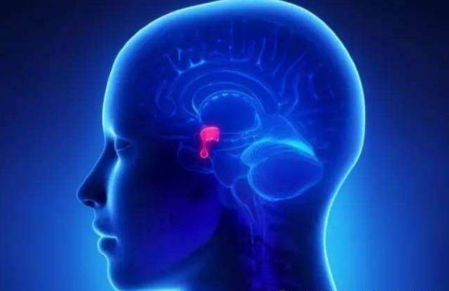 生活健康知识_无功能的垂体瘤不治疗可以吗?