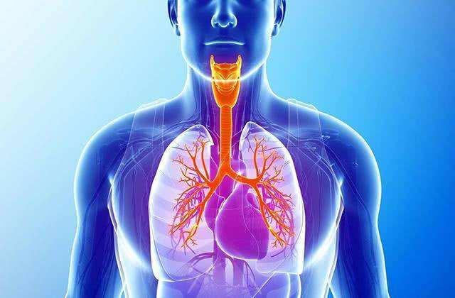 引起支气管扩张症的原因有哪些?